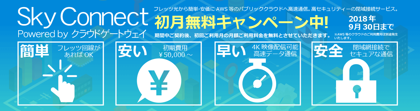 Sky Connect AWS に directconnect