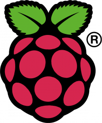 Raspi_Colour_R-207x250