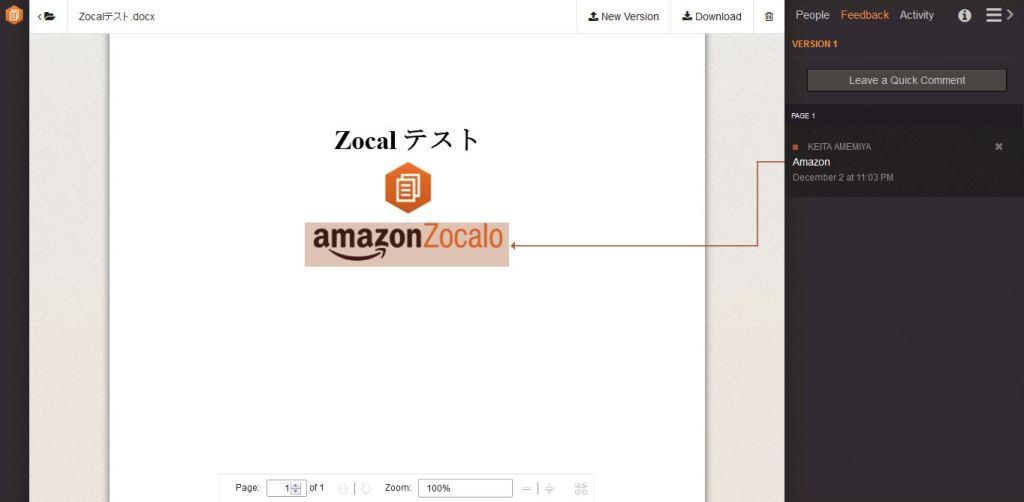 zocalo_comment2