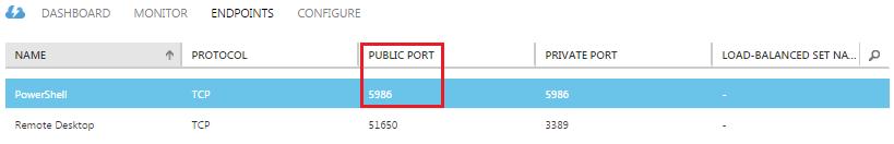 Azure VM Endpoint