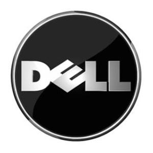 dellサーバでf1キーを押さないとosが起動しない問題 skyarch broadcasting