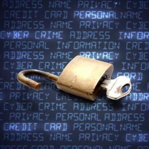 脆弱性をついた不正アクセスとは?